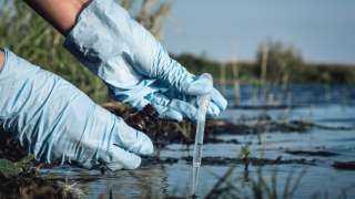 تقنية جديدة تزيل ملوثات المياه الجوفية بقشور المأكولات البحرية